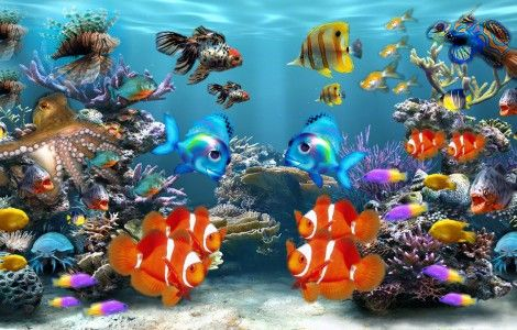 Fond d cran pc aquarium anime gratuit wallpapers for Fond ecran gratuit aquarium